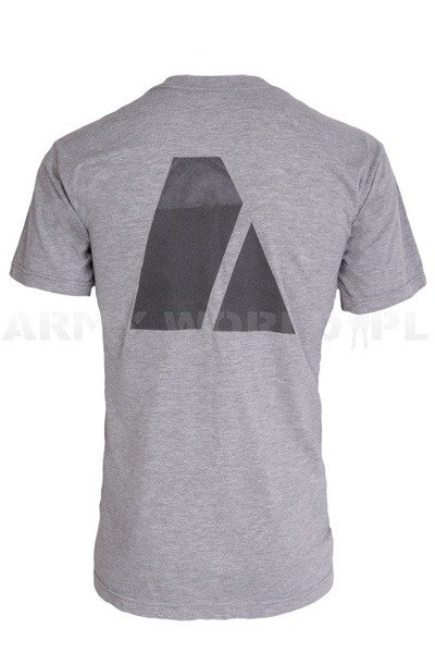 Military T-shirt US Army FITNESS UNIFORM Grey Demobil